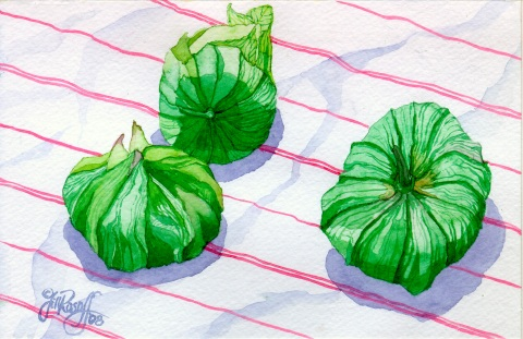 tomatillos-on-stripes